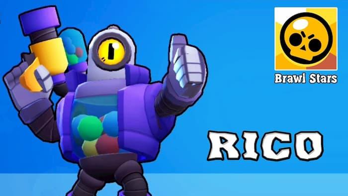 Рико обычный